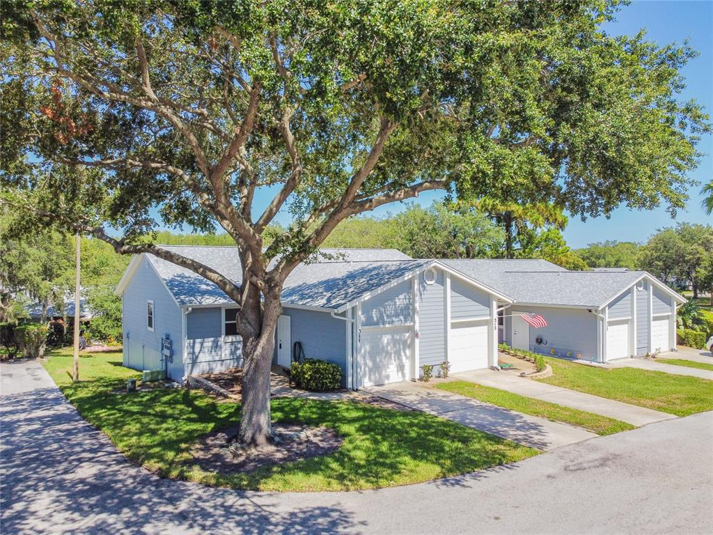 39650 US HIGHWAY 19 N #311, Tarpon Springs FL 34689