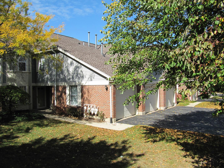 1165 Russellwood Court, Buffalo Grove IL 60089