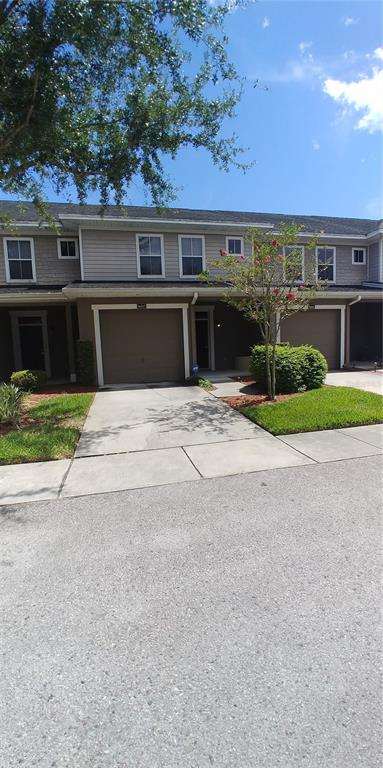 8007 BALLY MONEY RD, Tampa FL 33610