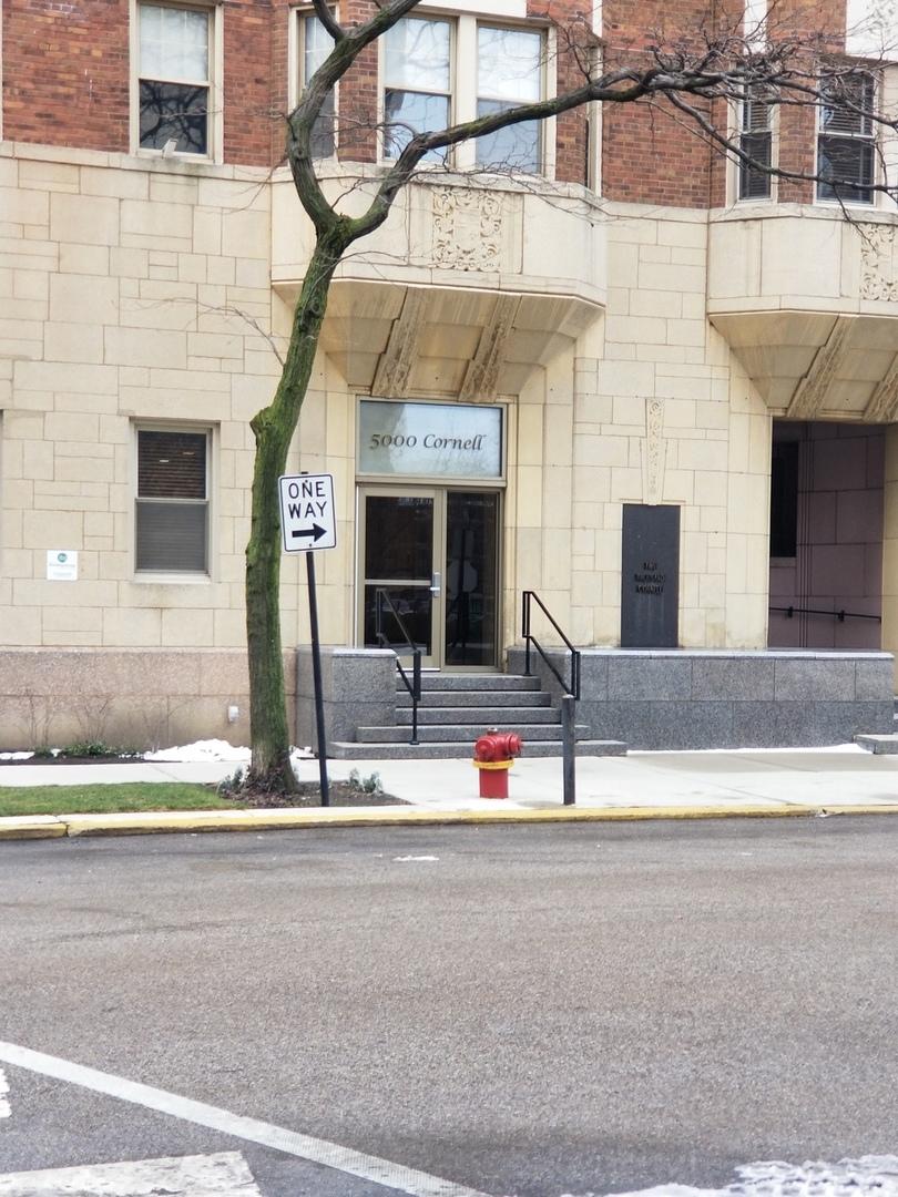 5000 S Cornell Avenue Unit 10D, Chicago IL 60615